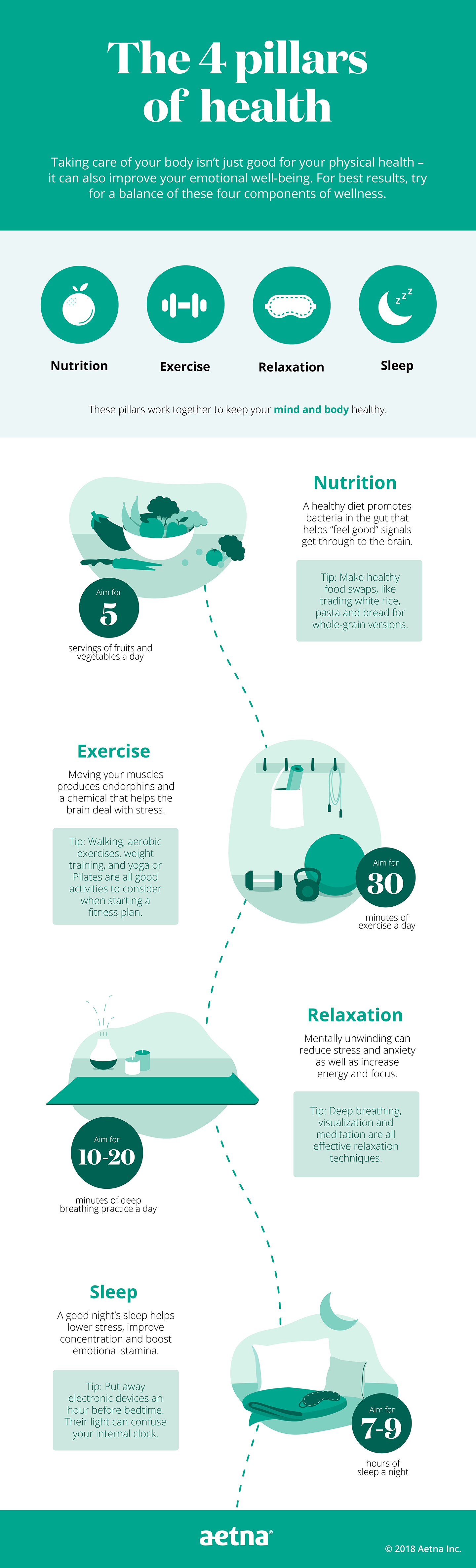 4 pillars of health infographic