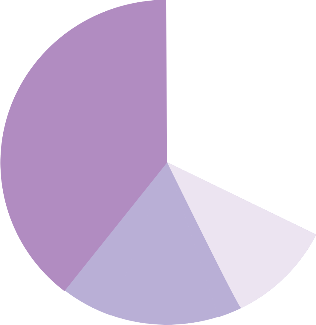 Large slice of pie chart with detail
